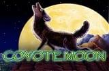 Coyote Moon Slot