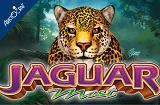 Jaguar Mist Slot