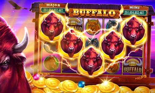 buffalo slot